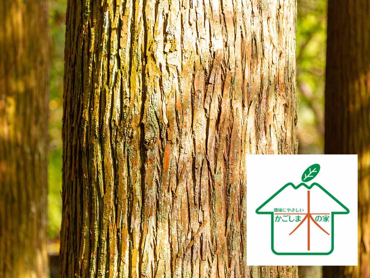 カマダの家は、鹿児島の風土で育った木材を使用